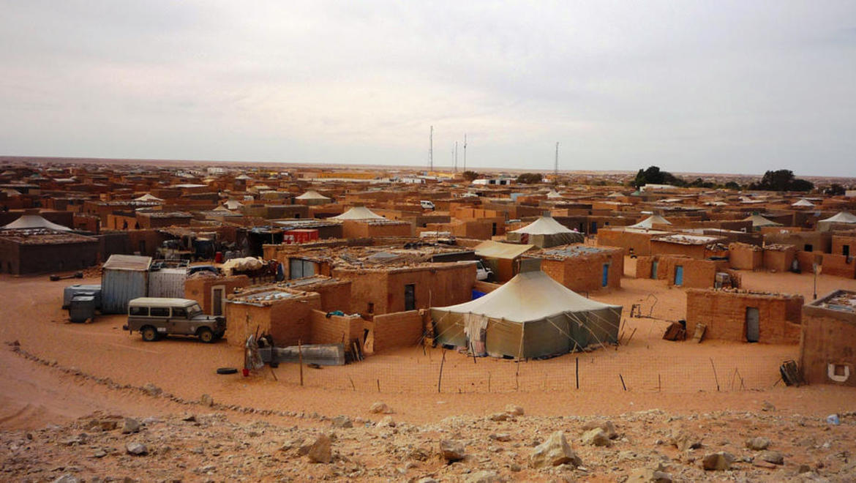 Fagforbundet Vest Plyndret Ung SaharaOkkupert Og 5RL3A4jq